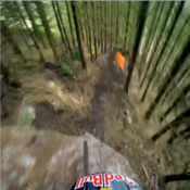 Redbull Hardline - Blurs the lines of Freeride and Downhill